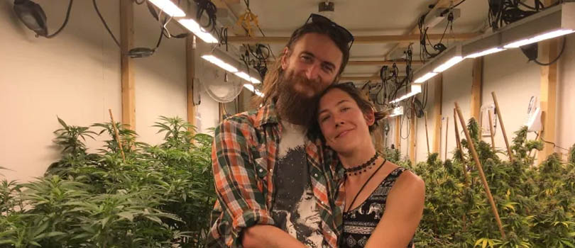 Alaska Cannabis Business