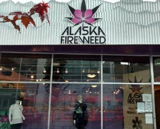 Alaska Fireweed