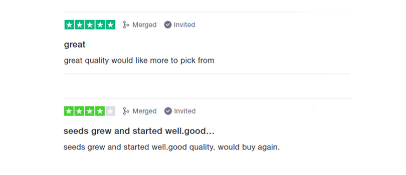 Beaver Seeds Customer Reviews