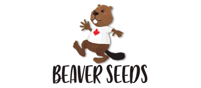 Beaver Seeds Logo