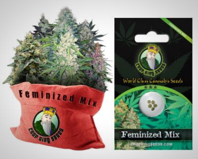 Crop King Seeds Feminized Mix Pack