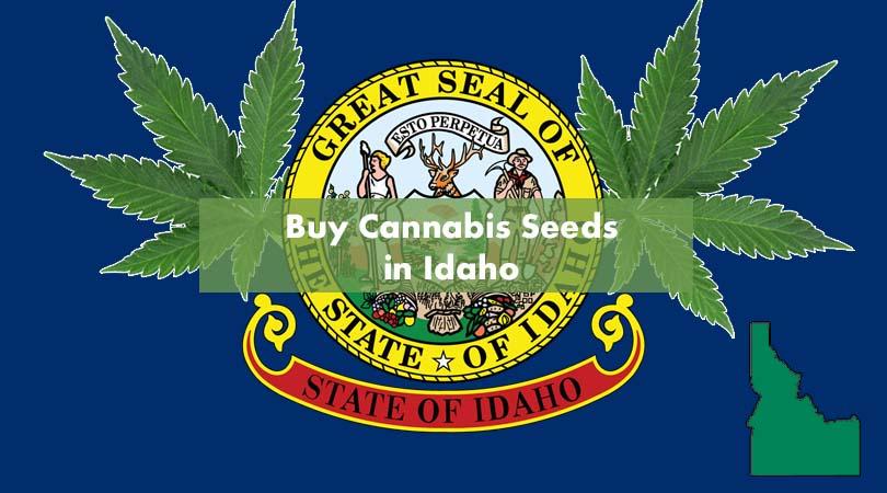 Buy Cannabis Seeds in Idaho Cover Photo