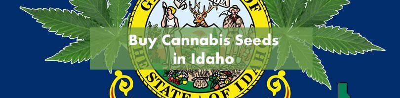 Buy Cannabis Seeds in Idaho Featured Image