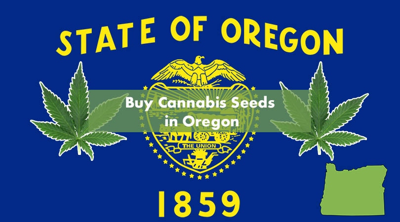 Buy Cannabis Seeds in Oregon Cover Photo