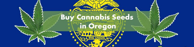 Buy Cannabis Seeds in Oregon Featured Image