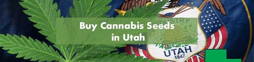 Buy Cannabis Seeds in Utah Featured Image