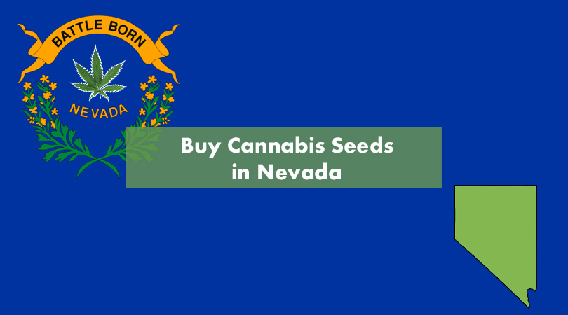 Buy Cannabis in Nevada Cover Photo