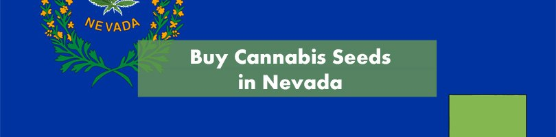 Buy Cannabis in Nevada Featured Image