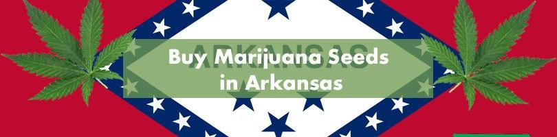 Buy Marijuana Seeds in Arkansas Featured Image