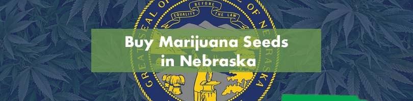 Buy Marijuana Seeds in Nebraska Featured Image