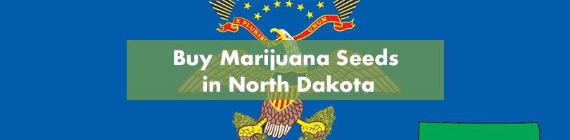 Buy Marijuana Seeds in North Dakota Featured Image