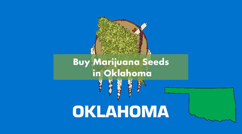 Buy Marijuana Seeds in Oklahoma Cover Photo