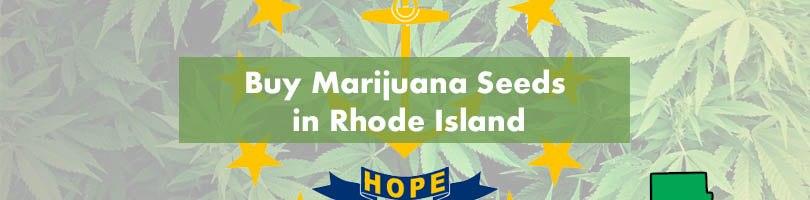 Buy Marijuana Seeds in Rhode Island Featured Image