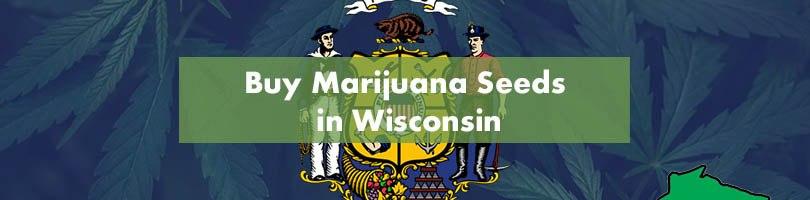 Buy Marijuana Seeds in Wisconsin Featured Image