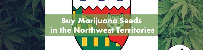 Buy Marijuana Seeds in the Northwest Territories Featured Image