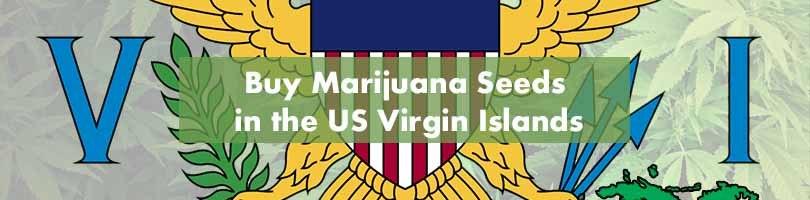 Buy Marijuana Seeds in the US Virgin Islands Featured Image
