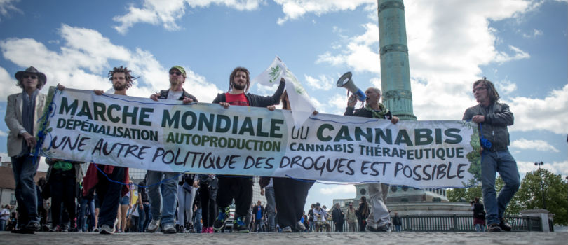 Pro marijuana march in Paris, France