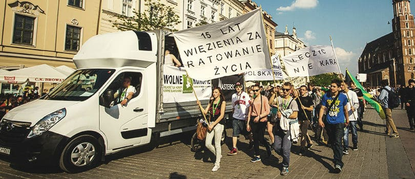 Buy Cannabis Seeds In Poland2
