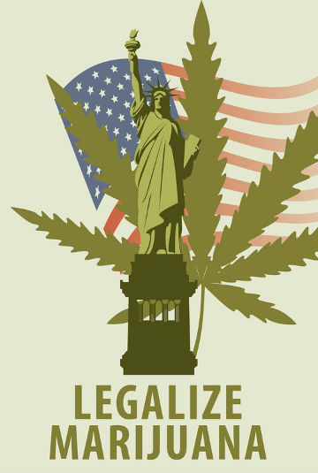 Buy Cannabis Seeds in The United States.