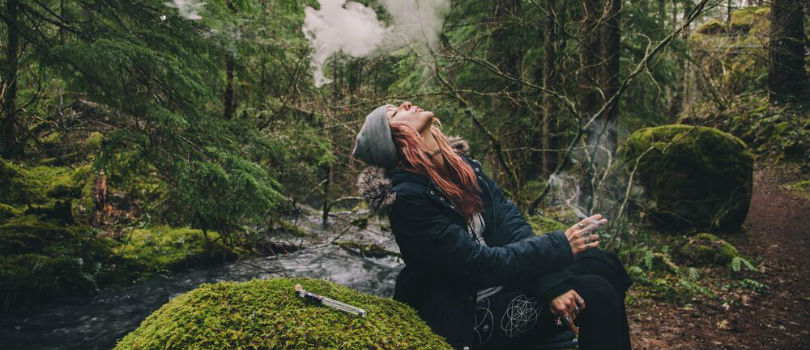 Why CBD Can't Get You High