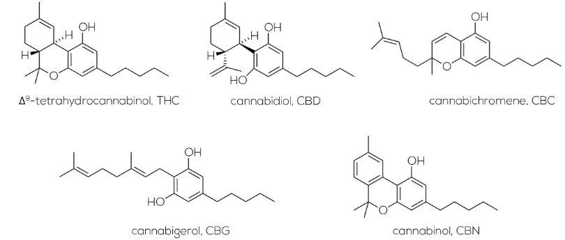 Cannabinoids Molecule Structure