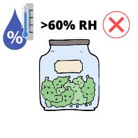 Cannabis Buds Too High Humidity