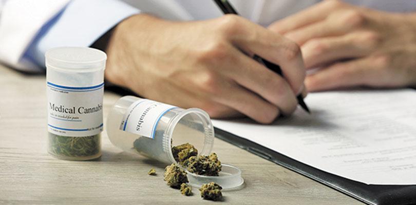 Cannabis Insurance Medical Marijuana