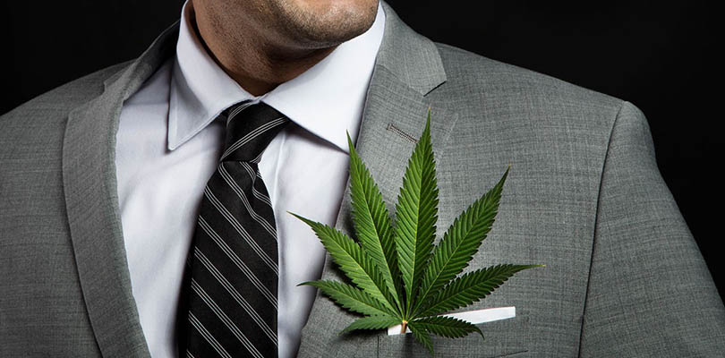 Cannabis Insurance business and personal