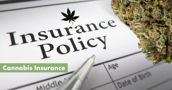 Cannabis Insurance Featued Image