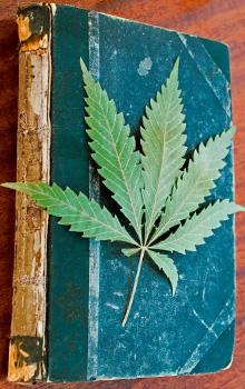 Cannabis Leaf Books
