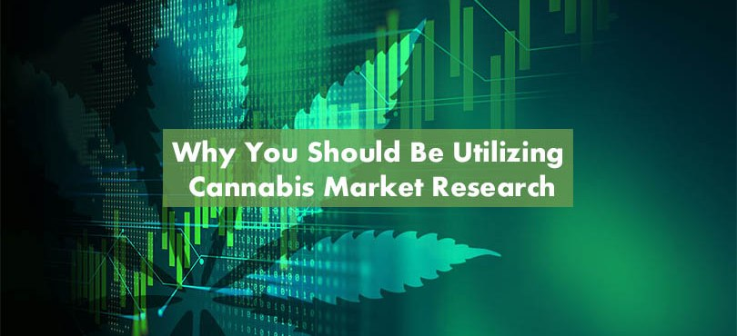 Cannabis Market Research Firms Featured Image