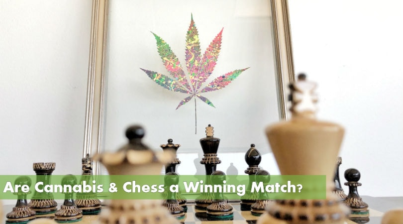 Are Cannabis and Chess a Winning Match?