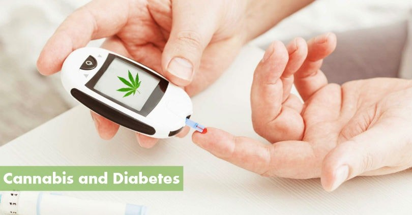 Cannabis Could be the Next Step in Treating Diabetes
