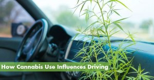 How Cannabis Use Influences Driving