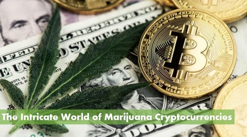 Marijuana Cryptocurrency