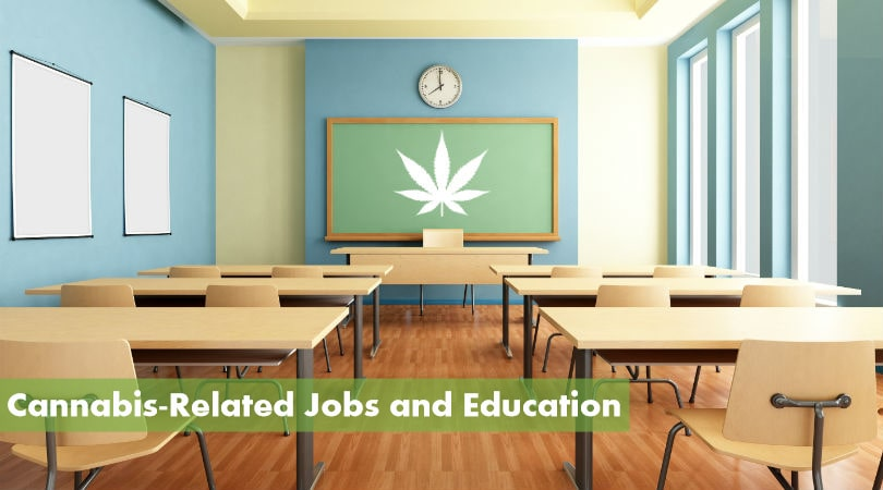 Cannabis Jobs and Education