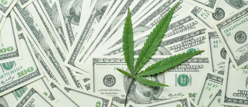 Cannabis Jobs and Education
