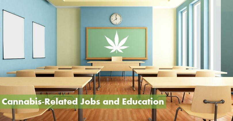 Cannabis Education is Growing to Meet the Needs of a New Industry