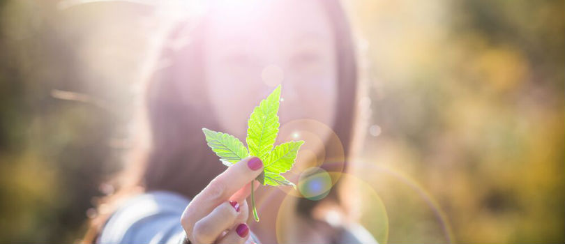 Creating A Positive View of The Cannabis Industry Through Society Outreach