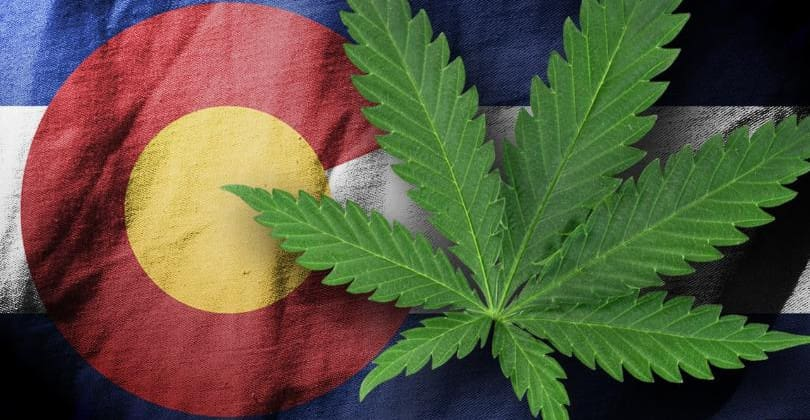 Colorado's Best Marijuana Lawyers