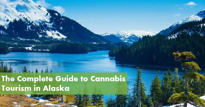The Complete Guide to Cannabis Tourism in Alaska