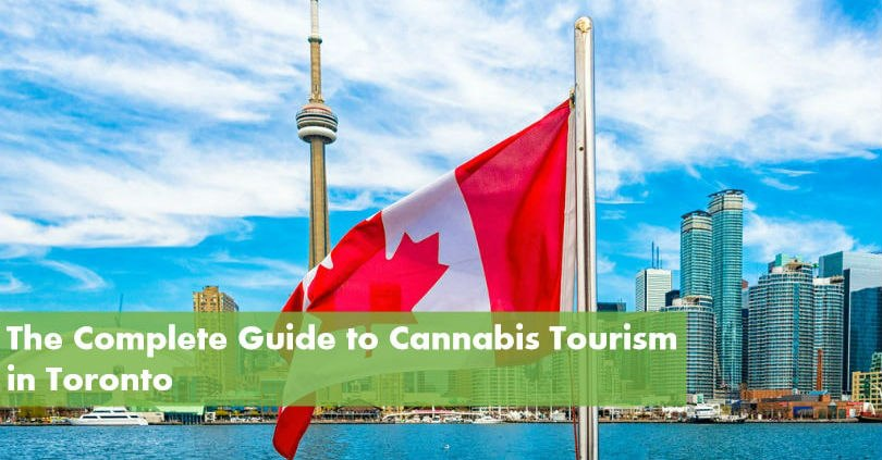 The Complete Guide to Cannabis Tourism in Toronto