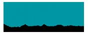 Chetu Logo