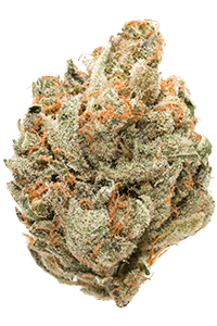 Clementine Weed Bud