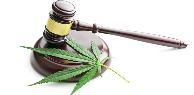 Covid-19 Cannabis Legislation