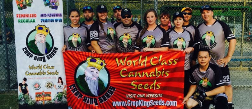 Crop king Seeds Team