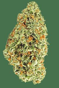 Fire OG Weed Bud