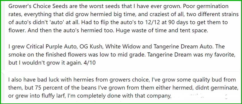 Growers Choice Seeds Forum