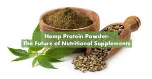Hemp Protein Powder Featured Image