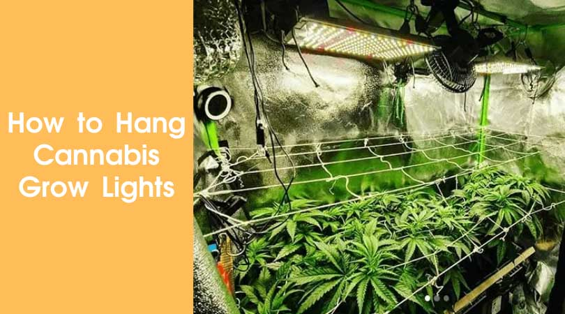 How to Hang Cannabis Grow Lights Cover Photo